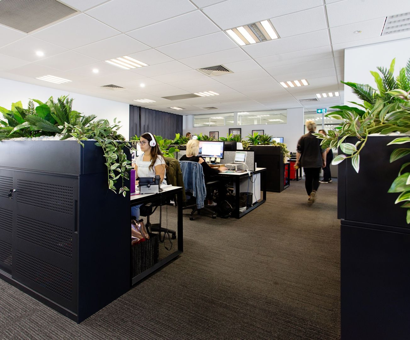 Live Nation Office Fitout 4