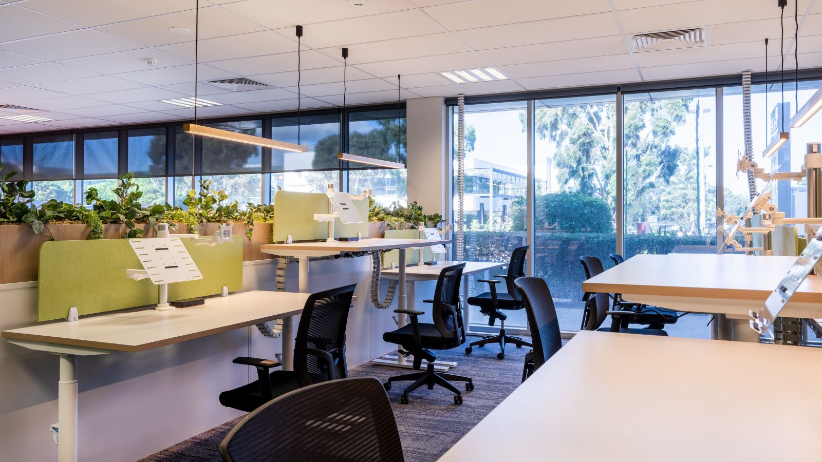 Omnicell Office Fitout 3 v2